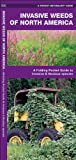 Invasive Weeds of North America: A Folding Pocket Guide to Invasive & Noxious Species (Pocket Naturalist Guide Series)