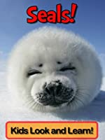 Seals! Learn About Seals and Enjoy Colorful Pictures - Look and Learn! (50+ Photos of Seals) (English Edition)