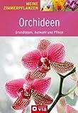 Orchideen: Grundlagen, Auswahl und Pflege. Orchideenzauber für die Wohnung