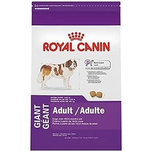 Royal Canin Adult Dry Dog Food, 35-Pound
