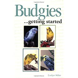Budgies as a Hobby (Save Our Planet)