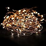 EShing 33ft 100 LED Copper Wire Fairy...