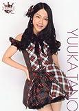 AKB48 秋葉原限定 第2弾 公式生写真ポスターA4(期間限定)【田野 優花】
