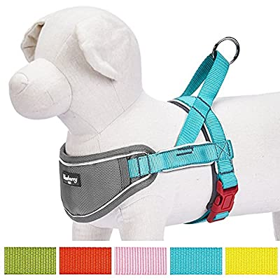 Blueberry Pet 5 Colors Soft & Comfortable 3M Reflective Strips Nylon No Pull Neoprene Padded Training Dog Harness