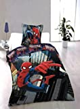 Marvel Spiderman Single Panel Duvet Set