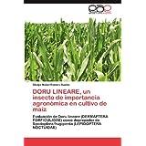 DORU LINEARE, un insecto de importancia agronómica en cultivo de maíz: Evaluación de Doru lineare (DERMAPTERA...