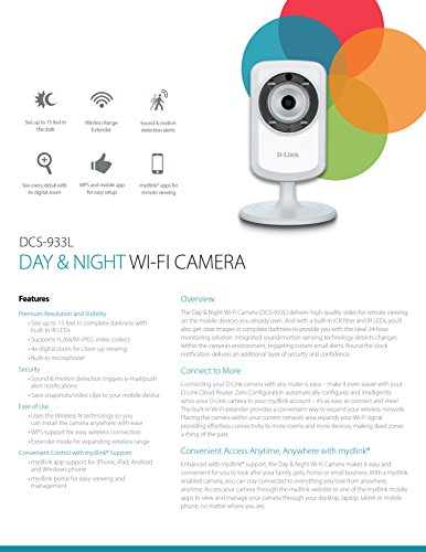 D-Link Wireless Day/Night Network Sur...