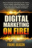 Digital Marketing on Fire!: How to Position Yourself as the Expert, Attract Highly Qualified Buyers, and Grow your Business with Simple but Powerful Digital Media Strategies