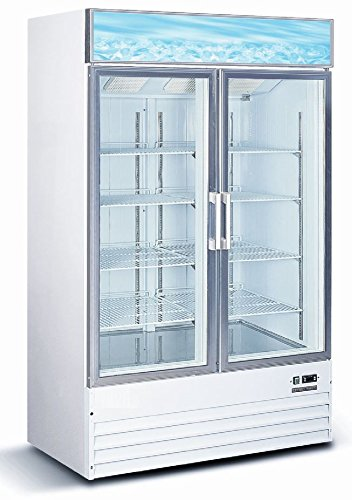 Commercial Restaurant Glass Double 2 Door Reach in Freezer Ice Merchandiser