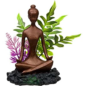 Blue ribbon zen girl with plants aquarium for Decoration zen aquarium