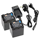 DSTE® 2pcs VW-VBN260 Replacement Li-ion Battery + Charger DC126U for Panasonic VBN260, VW-VBN130 and Panasonic HC-X800, HC-X900, HC-X900M, HC-X910, HC-X920, HC-X920M, HDC-HS900, HDC-SD800, HDC-SD900, HDC-TM900 Digital Cameras (Fully Decoded)