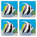 Liili Natural Rubber Square Coasters 4 Pieces Per Order Image Id: 9665202 Schooling Bannerfish On Blue Screen Thailand
