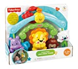 Fisher Price Precious Planet Link And Chime Friends