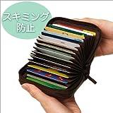 スキミング防止20枚カードケース ブラウン