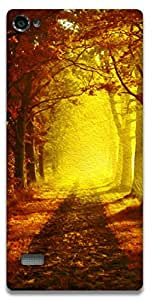 The Racoon Grip Autumn Path hard plastic printed back case / cover for Lenovo Vibe X2