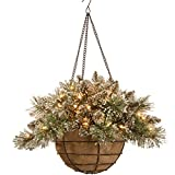 National Tree Glittery Bristle Pine Hanging Basket with Pine Cones, 20-Inch