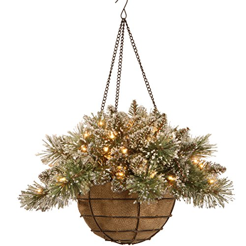 National Tree Glittery Bristle Pine Hanging Basket with Pine Cones