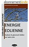Energie éolienne: évaluez le gisement éolien sur votre site (Collection Savoir-Faire t. 1)