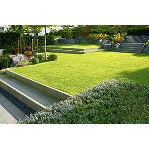 Moderne Gartenarchitektur - minimalistisch, formal, puristisch (Garten- und Ideenbücher BJVV)