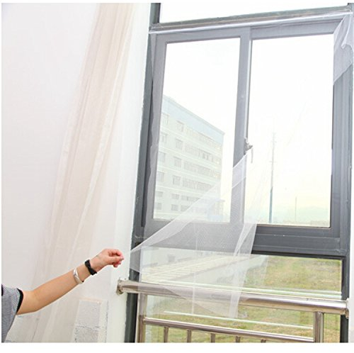 edealing-blanca-ventana-en-pantalla-grande-de-la-red-del-acoplamiento-del-insecto-de-la-mosca-del-in