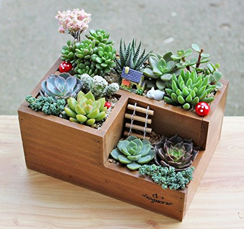 classic-3-compartment-brown-wood-desk-organizer-plant-container-box-desktop-office-supply-caddy-pen-