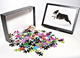 Photo Jigsaw Puzzle of LA-7530 Dog - Bos...