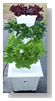 Easy Gardening, Self Watering, Vertical Growing Garden, Raised Bed, Patio Planter, Dirt Free, Coconut Coir, Deck Pot, Deck Planter, Vegetable Planter, Strawberry Planter, Fruit Planter By Verti-gro