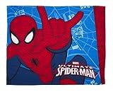 Couverture 'Spiderman
