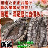 蝦夷あわびМ(70/80g)5枚入 【エゾアワビ 活】 のし お年賀