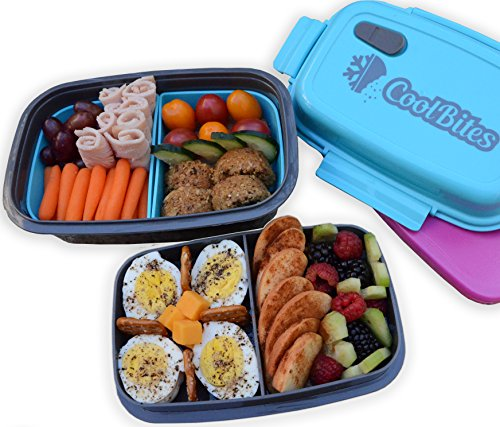 CoolBites Premium Bento Lunch Box - BPA Free Leakproof Multi Compartment Convertible Lunch Container with Built-in Freezable Gel Ice Pack (Bento Box With Ice Pack compare prices)