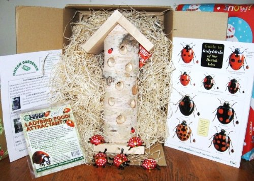 Ladybird Gift Box-great gardening gift Order now for free seed shaker
