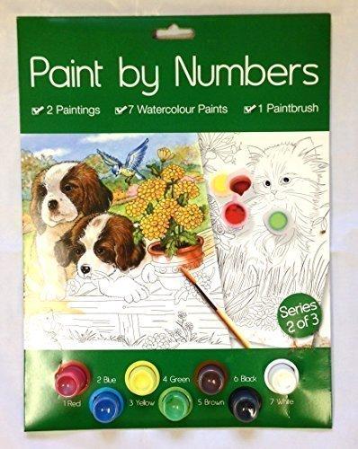 A4 Paint By Numbers Creativo Arte Adulto Senior Gatto & Cane Design Regalo Di Compleanno