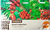 HOMEBASE SEEDS. GROW YOUR OWN SALAD COLLECTION 10 VARIETIES , EACH SEPARATELY PACKED FRESH SALAD ALL SUMMER LONG