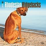 Rhodesian Ridgebacks 2015 Calendar: Original BrownTrout-Kalender