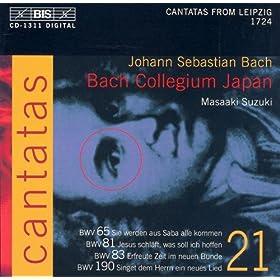 Sie werden aus Saba alle kommen, BWV 65: Chorale: Ei nun, mein Gott, so fall ich dir