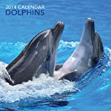 2014 Calendar: Dolphins: 12-Month Calendar Featuring Fabulous Photographs of Dolphins