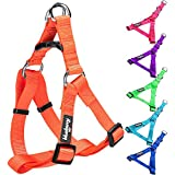 """Blueberry Pet Step-in Harnesses 1"""" Wide * 23.5-29.5"""" Chest Classic Solid Color Adjustable Florence Orange Dog Harness, Large"""