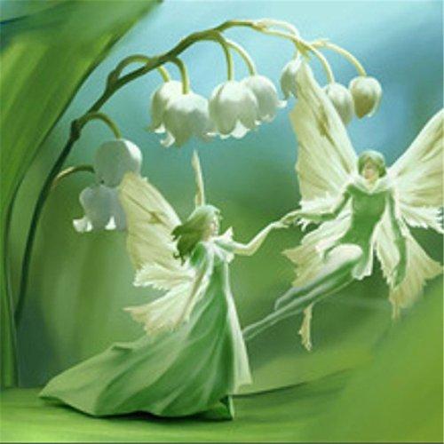 10-semi-pacchetto-giglio-dei-semi-valle-di-fiori-semi-di-orchidea-della-campana-aroma-ricco-semi-di-
