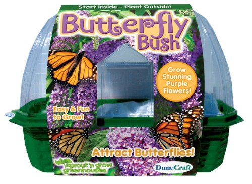 DuneCraft Butterfly Bush Sprout and Grow Greenhouse