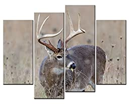 Canval prit painting Animal Wall Art Large White Tailed Deer Buck Standing in a Meadow on Foggy Morning 4 Panel Picture on Canvas