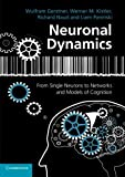 img - for Neuronal Dynamics: From Single Neurons To Networks And Models Of Cognition by Wulfram Gerstner (2014-09-22) book / textbook / text book