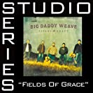 Fields Of Grace (Studio Series)