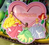 DISNEY PARK PRINCESS VINYL MAGNETIC PHOTO FRAME NEW