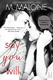 Say You Will (Billionaire Contemporary Romance) (The Alexanders Book 5)
