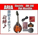 ARIA/アリア AM-20E ピックアップ付きフラットマンドリン お買い得小盛りセット