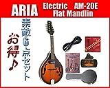 ARIA/アリア AM-20E ピックアップ付きフラットマンドリン お買い得小盛りセット ランキングお取り寄せ