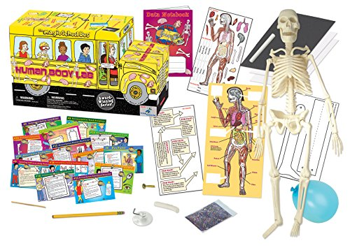 The Magic School Bus Human Body Lab (The Human Body Model compare prices)