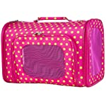 Pink Green Polka Dot Dog Cat Soft-Sided Pet Carrier Medium, 16-inch