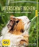 Meerschweinchen: So fühlen sie sich rundum wohl