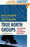 True North Groups: A Powerful Path to Personal and Leadership Development (BK Business)